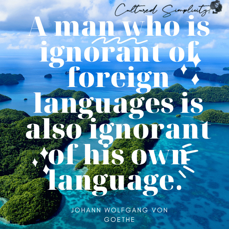 Motivational Quote for language learning