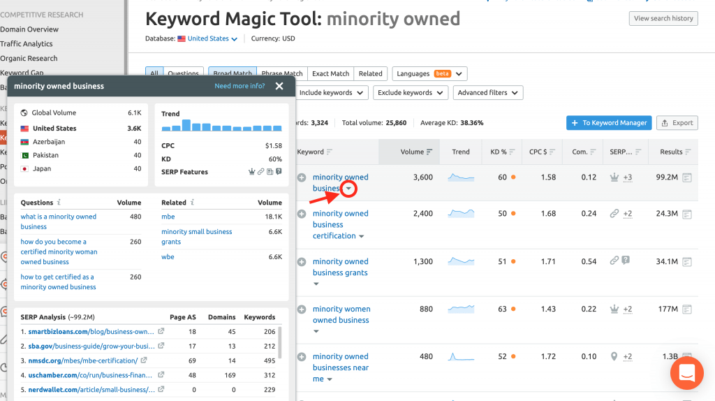 seo for minority owned